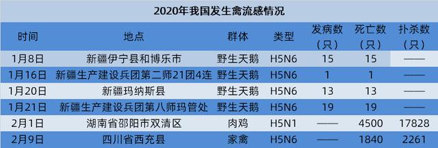 https://files.nxin.com/public/jiagong/2020/2/10/74/c6adcf9f-5377-4c9c-8a4e-e5f45932bc1e_m.png
