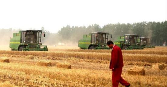 农业农村发展稳中有进、稳中有新