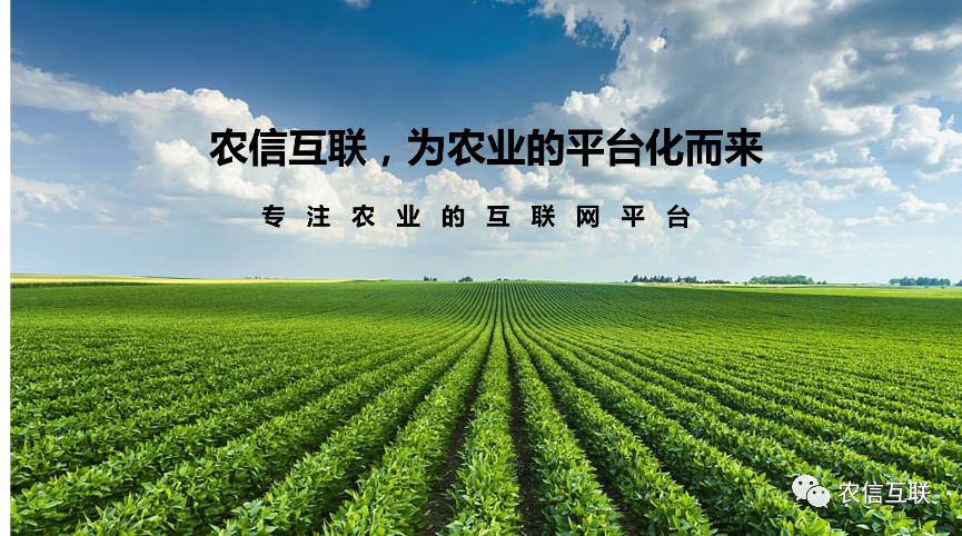 河南国际投资贸易洽谈会召开,农信互联受邀参加
