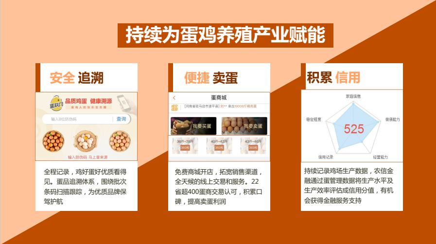 蛋联网蛋管理系统助力江西洪门集团开启智慧养鸡新篇章