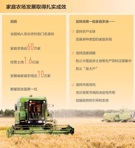 家庭农场 威尼斯平台登录高质量发展生力军