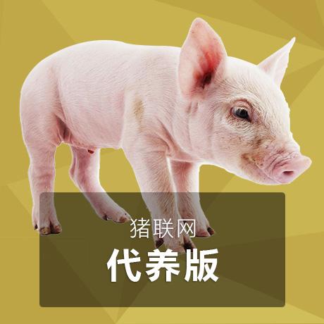 猪联网【代养版】