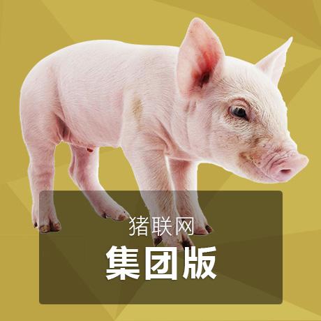 猪联网【集团版】