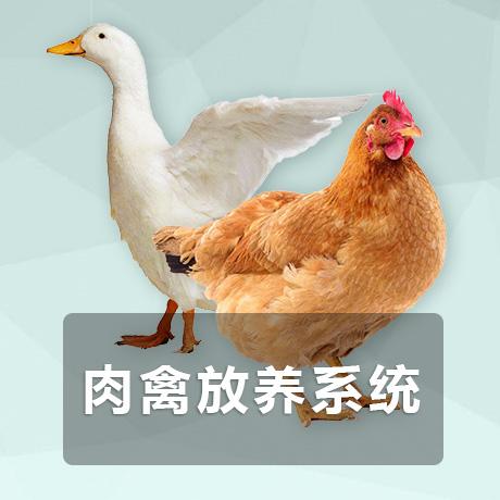 肉禽放养【企业版】